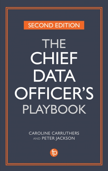 The Chief Data Officer's Playbook, 2nd Edition